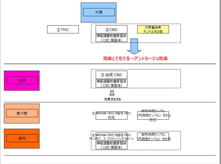 f:id:kanjuseitosyakaitojounetsu:20210220194144p:plain