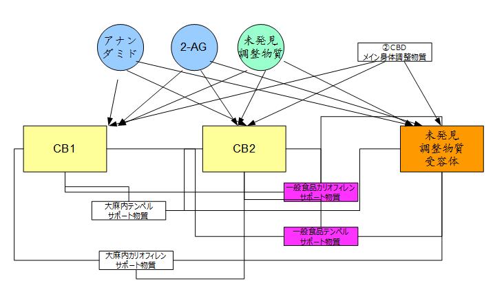 f:id:kanjuseitosyakaitojounetsu:20210224190059p:plain