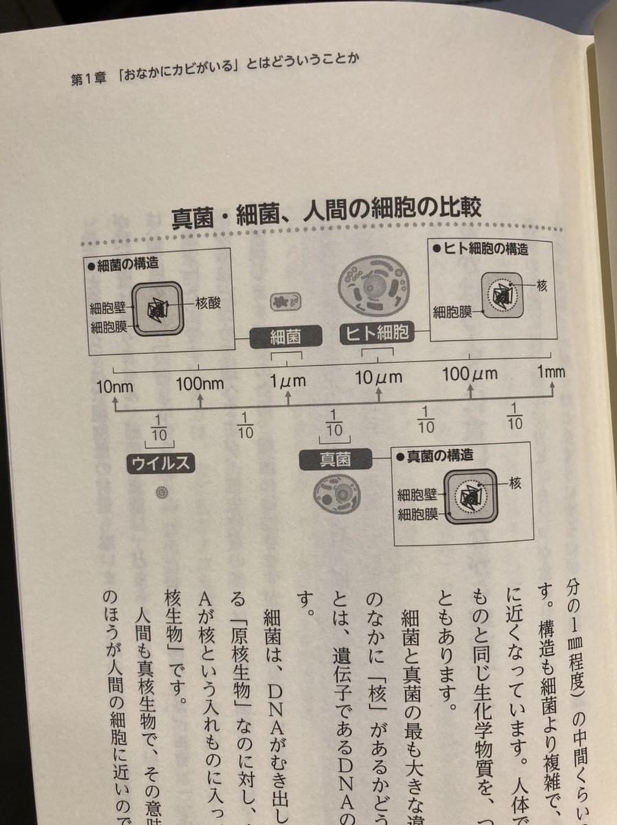 f:id:kanjuseitosyakaitojounetsu:20210502181325j:plain