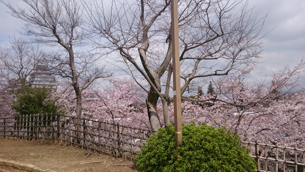 f:id:kankichikambe:20170408160153j:plain