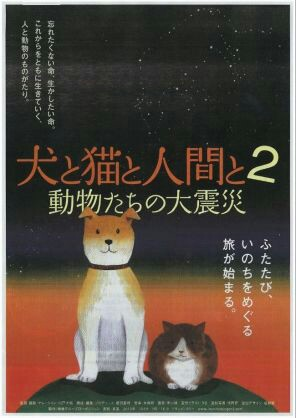f:id:kankokuneko:20161202150933j:image