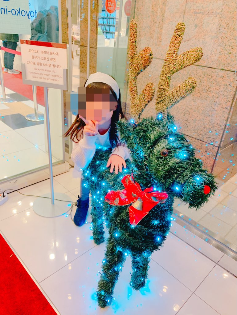 f:id:kanmi-korea:20181229211954j:plain