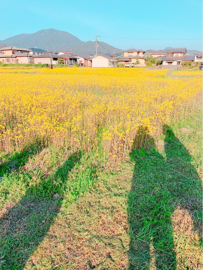 f:id:kanmi-korea:20190325001017j:plain