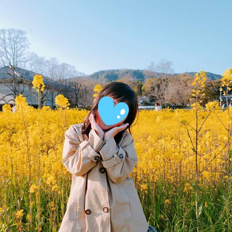 f:id:kanmi-korea:20190325001721j:plain