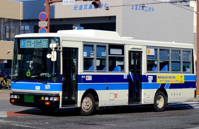 f:id:kanmokushou:20210401192348j:plain