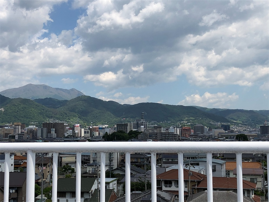 f:id:kanmokushou:20210529095557j:image