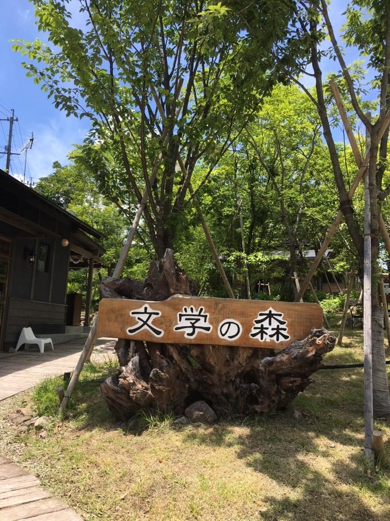 f:id:kannawadokusho:20180617231411j:plain