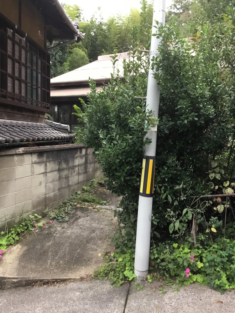 f:id:kannawadokusho:20181008215302j:plain