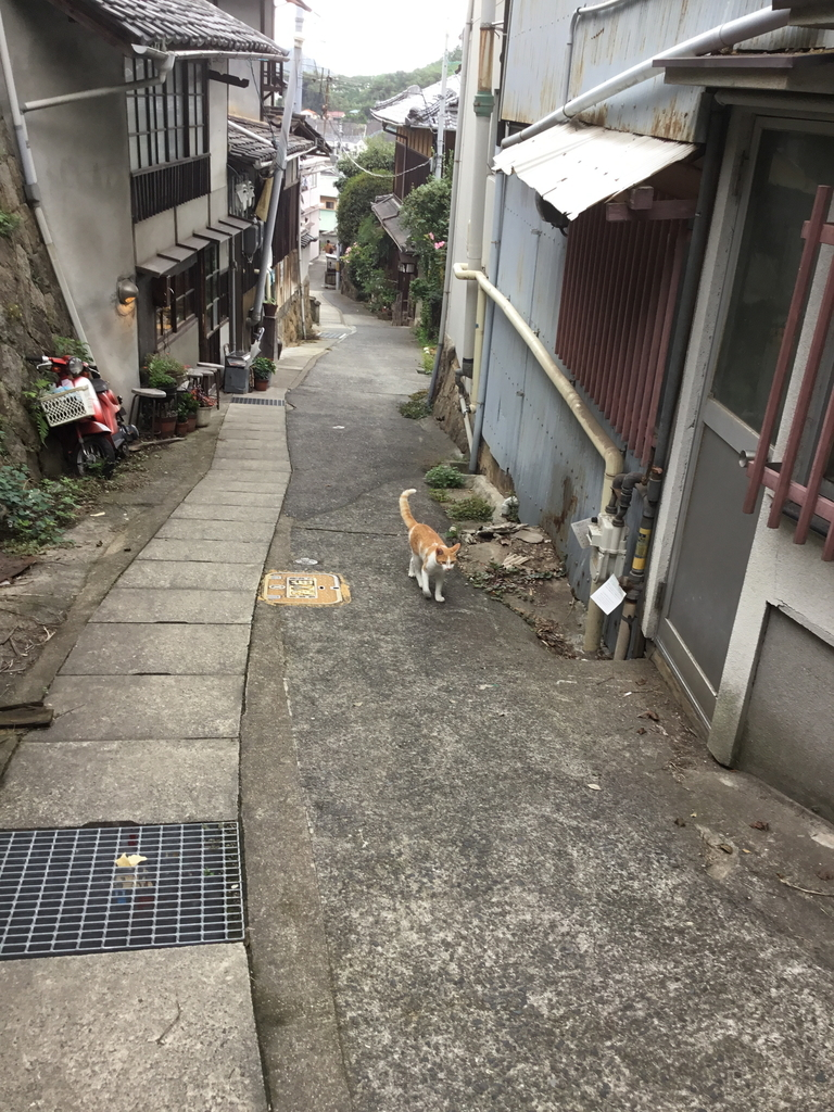 f:id:kannawadokusho:20181008215410j:plain