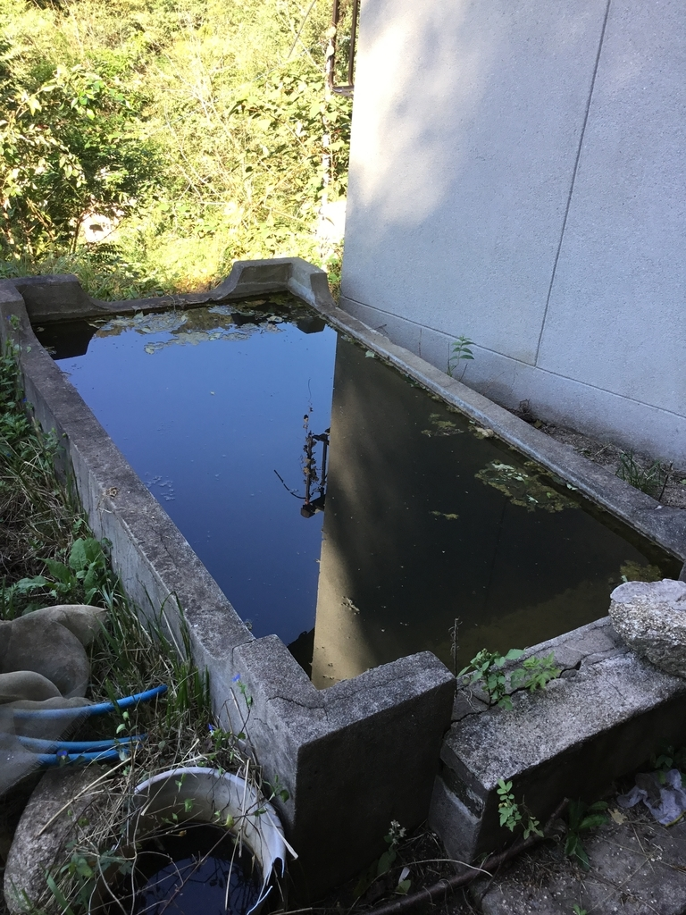 f:id:kannawadokusho:20181009102700j:plain