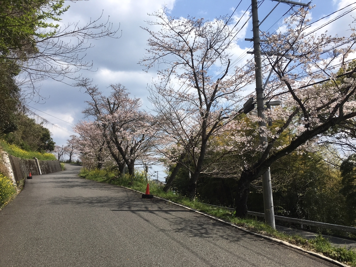 f:id:kannawadokusho:20190402132755j:plain