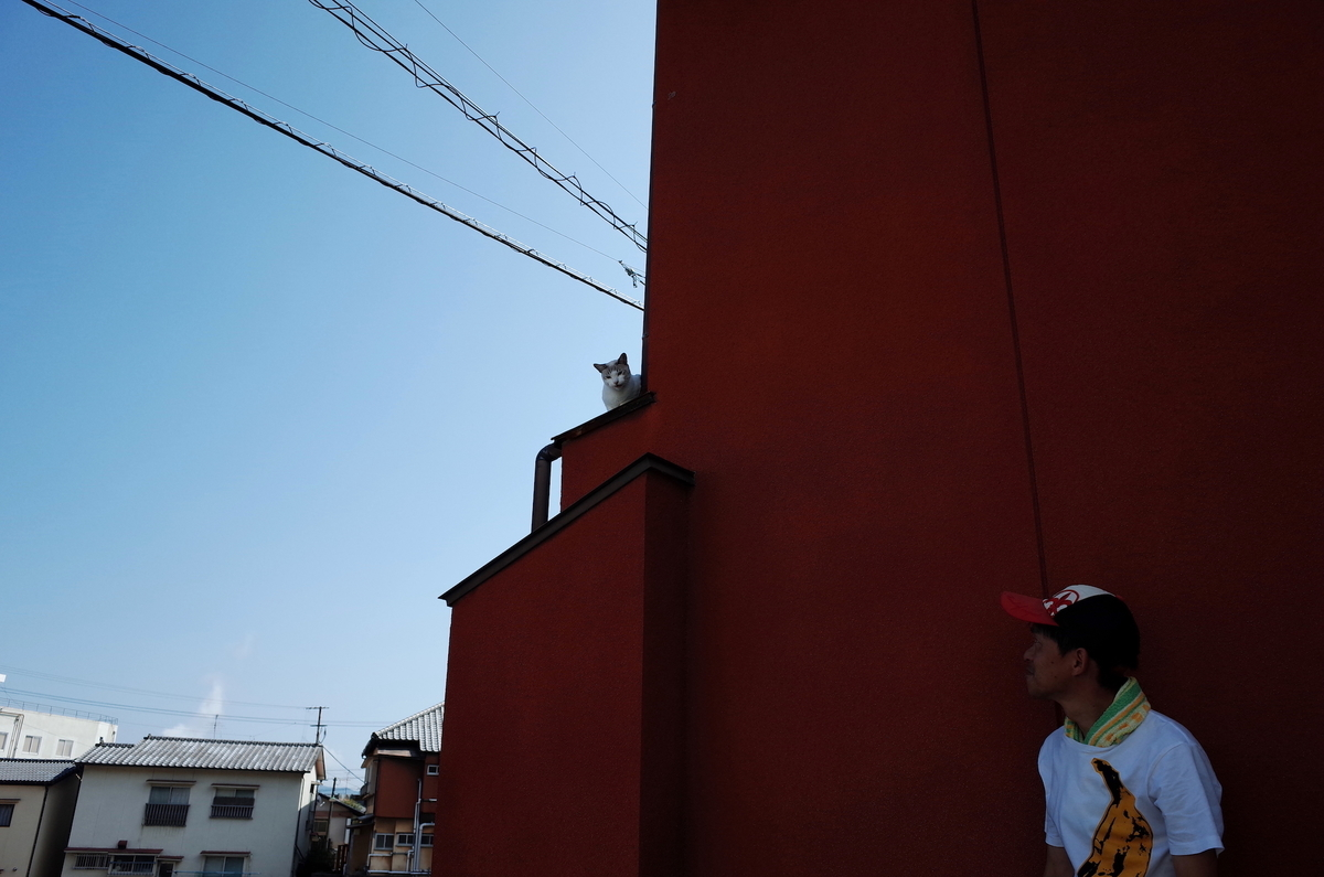 f:id:kannawadokusho:20190916130339j:plain