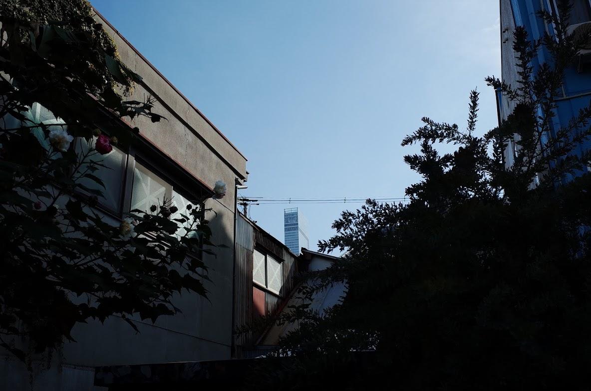f:id:kannawadokusho:20191107171549j:plain