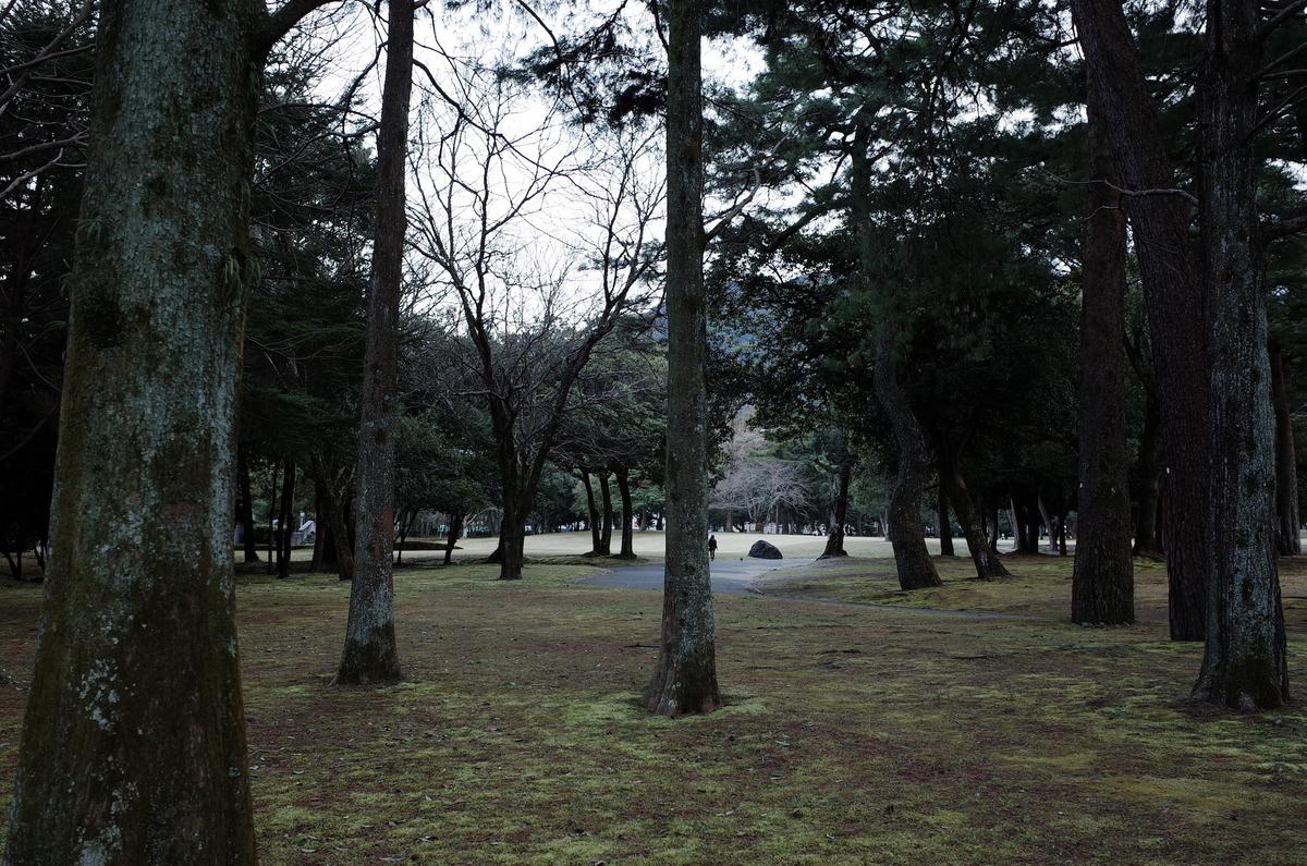 f:id:kannawadokusho:20200315174111j:plain