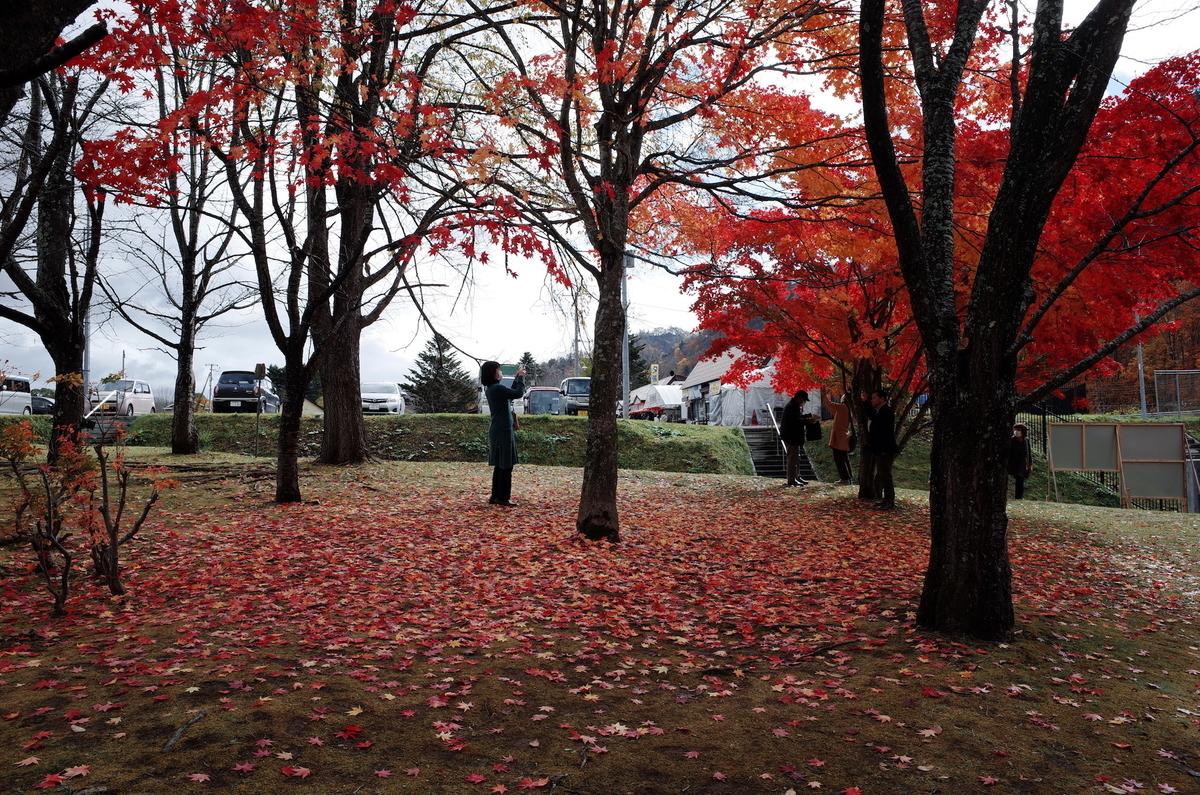 f:id:kannawadokusho:20201103165819j:plain