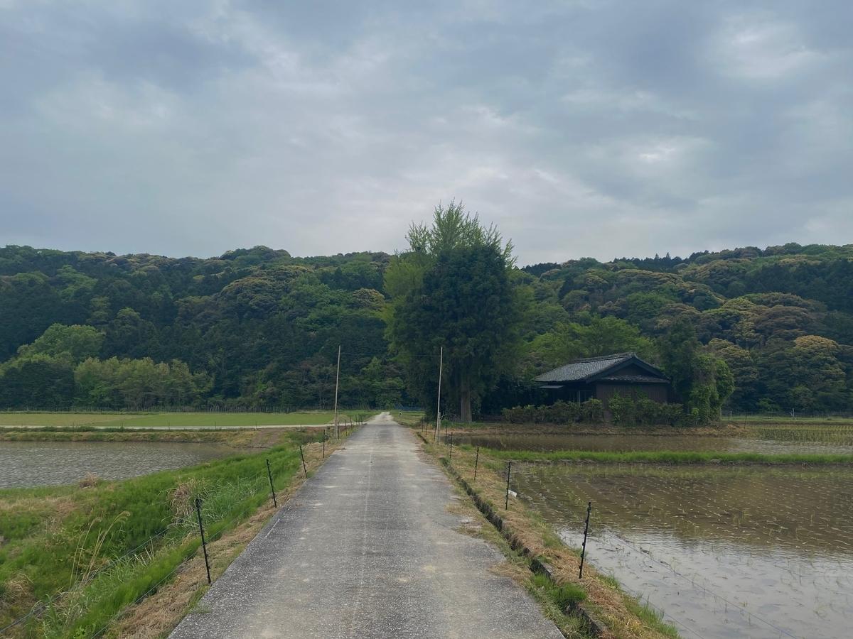 f:id:kannawadokusho:20210427104126j:plain