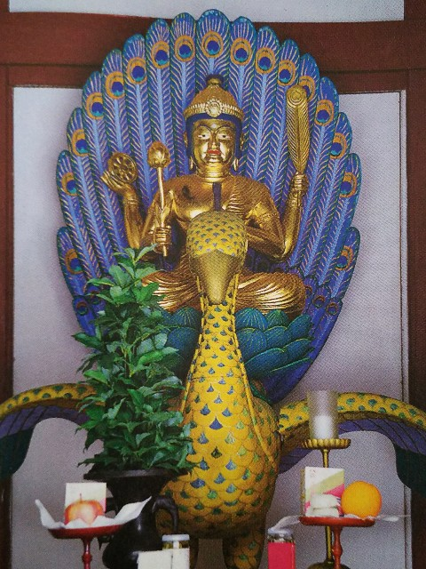 f:id:kannon-counseling:20200519113922j:image