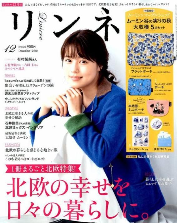 f:id:kanobun:20190221200113j:plain