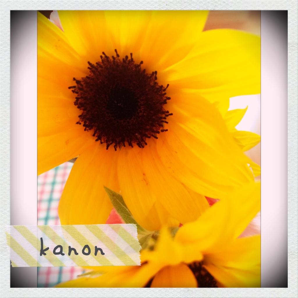 f:id:kanon1202:20160627143807j:plain