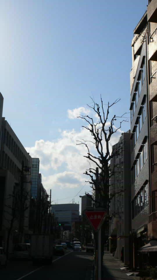 [東京][空][代々木]