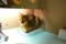 [猫][新宿][きゃりこ]