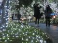 [東京][夜][新宿][イルミネーション]