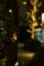 [横浜][イルミネーション][夜]