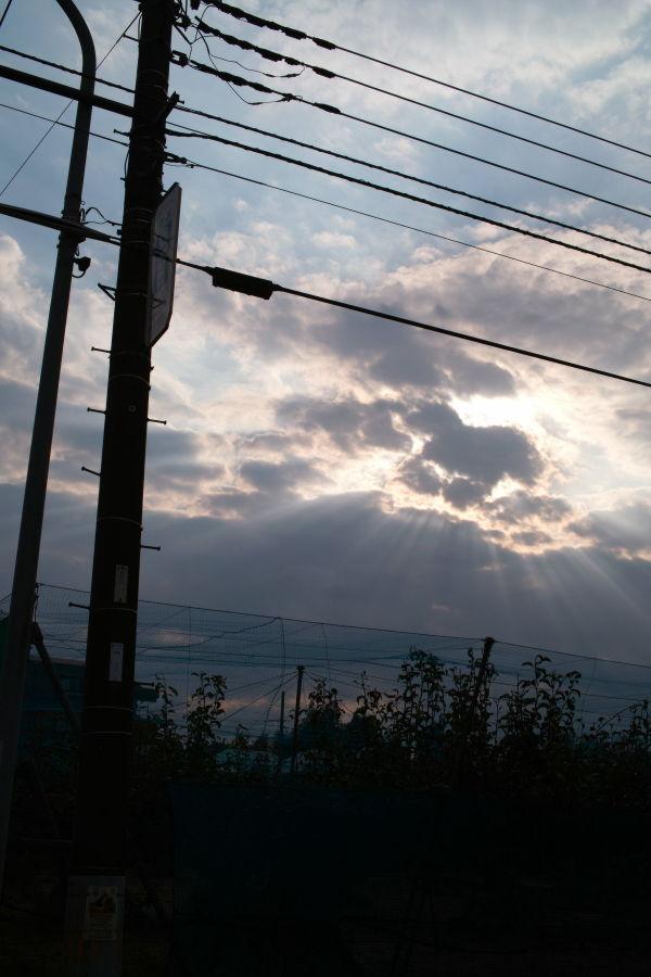 [横浜][空][夕焼け]