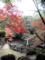 弁天と紅葉