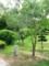 三ツ城公園