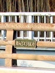 f:id:kanototori:20110403013907j:image
