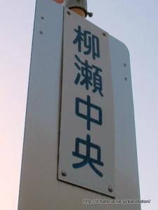f:id:kanototori:20121228062918j:image