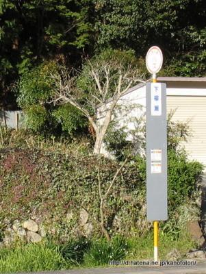 f:id:kanototori:20121228062919j:image