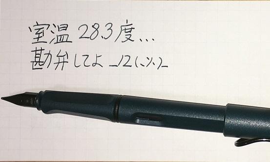 f:id:kanoyama:20170522235021j:plain