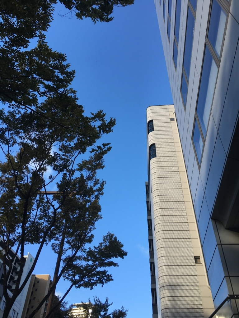 f:id:kanoyama:20171023220510j:plain
