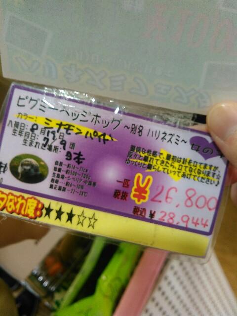 f:id:kanpachikobou:20170110154248j:image