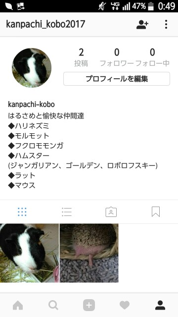 f:id:kanpachikobou:20170112005131j:image
