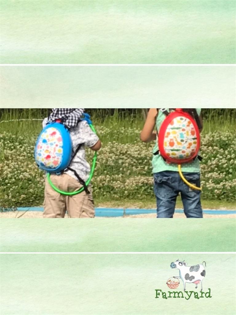 f:id:kansai_banzai:20180524002202j:image