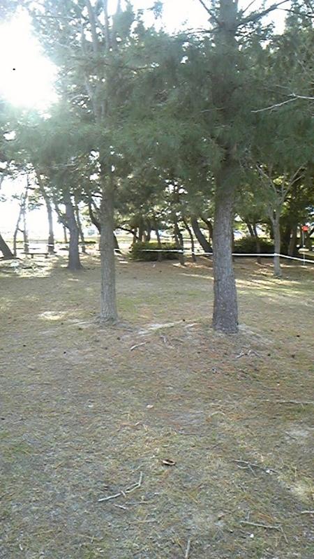 20101210144736