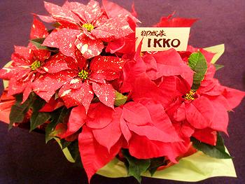 季節の贈り物の画像