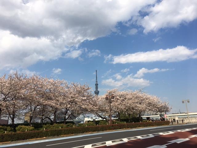 f:id:kansouki:20170414190851j:plain