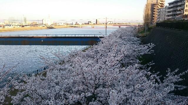 f:id:kantanakamura:20170414193557j:image