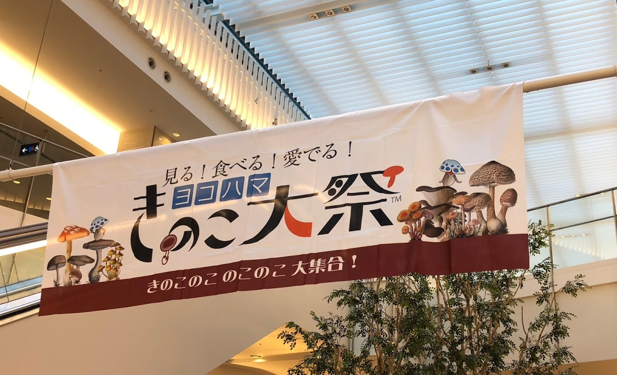 ヨコハマきのこ大祭