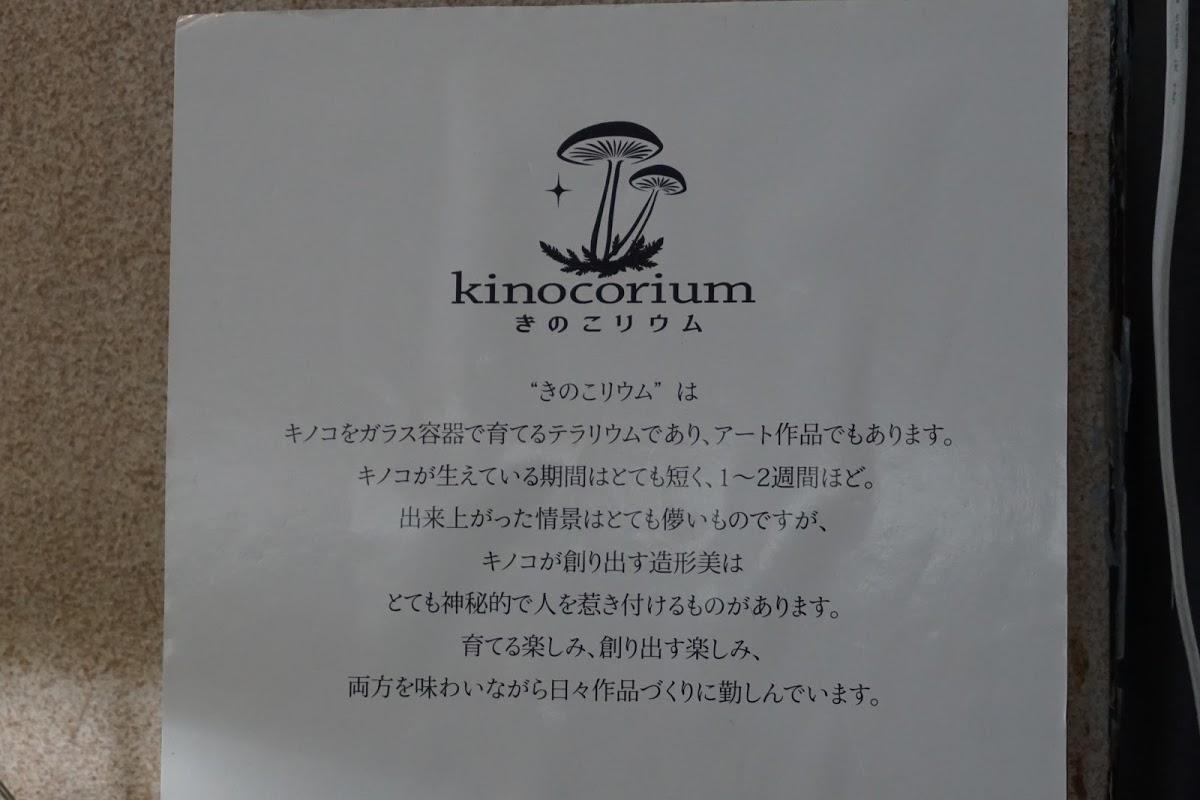 きのこリウムの展示