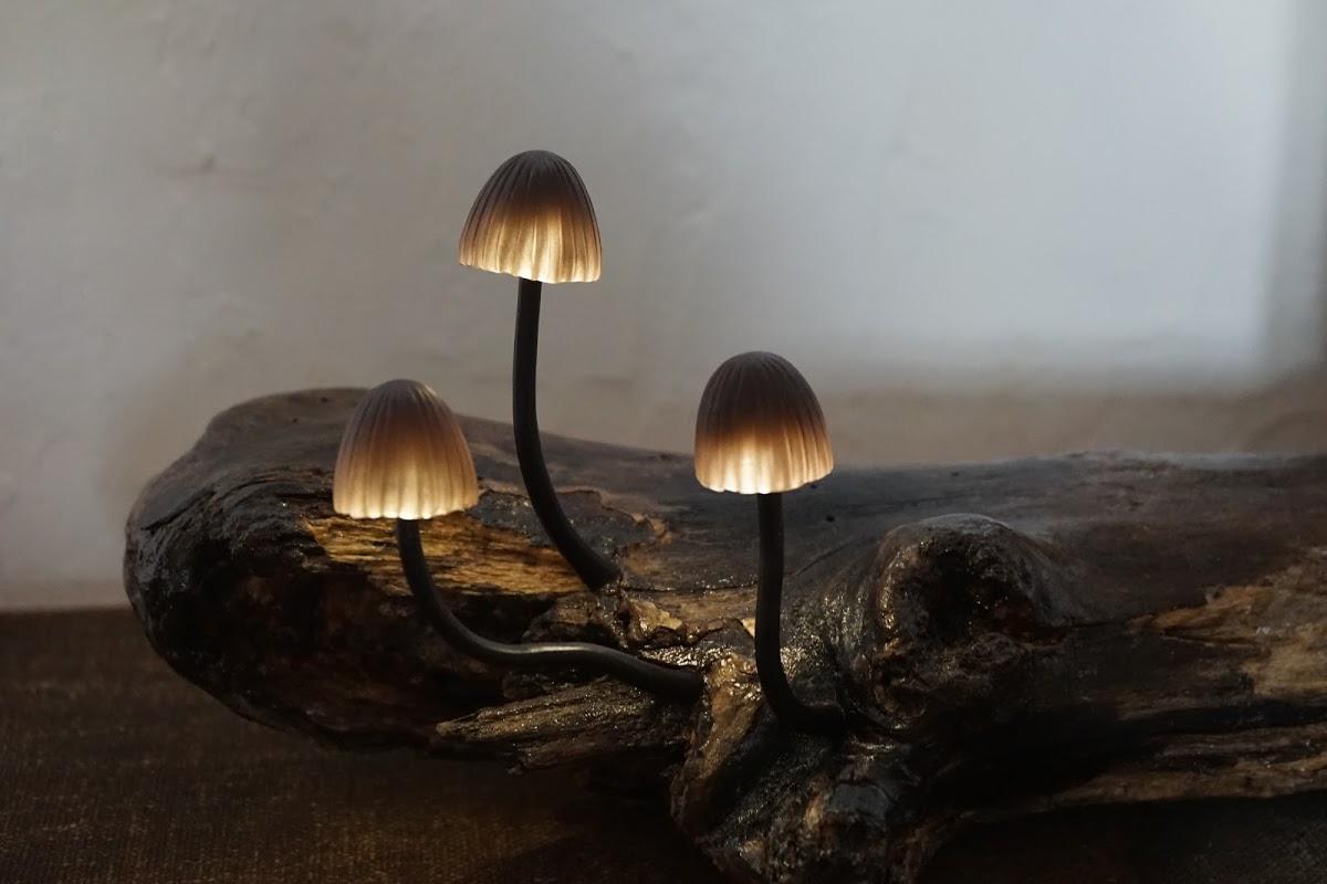 きのこランプ作家 高野さんの個展Earthstar Magicが幻想的で美しかった