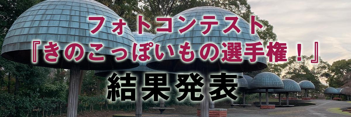 フォトコンテスト『きのこっぽいもの選手権!』結果発表