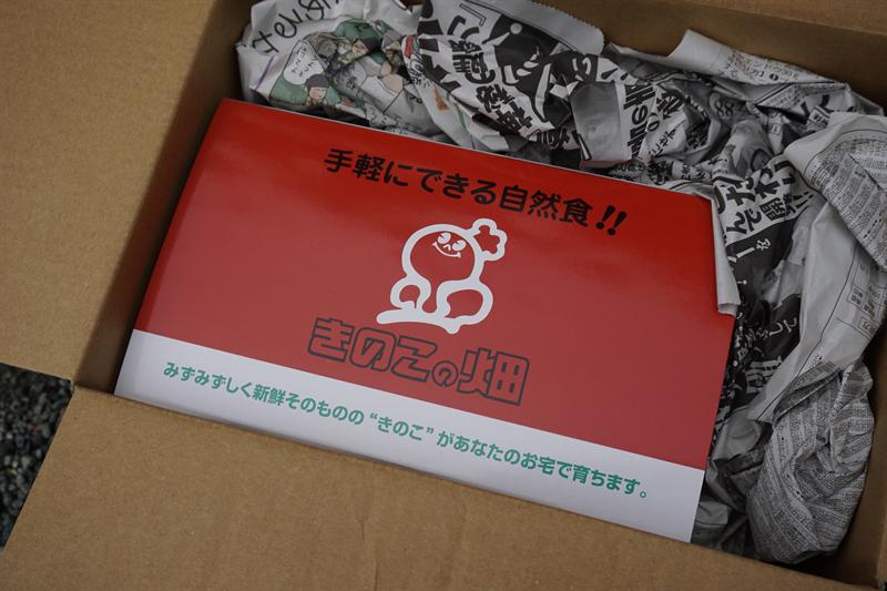 ササクレヒトヨタケ栽培キット『きのこの畑』