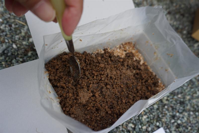 ササクレヒトヨタケ栽培キットのセッティング