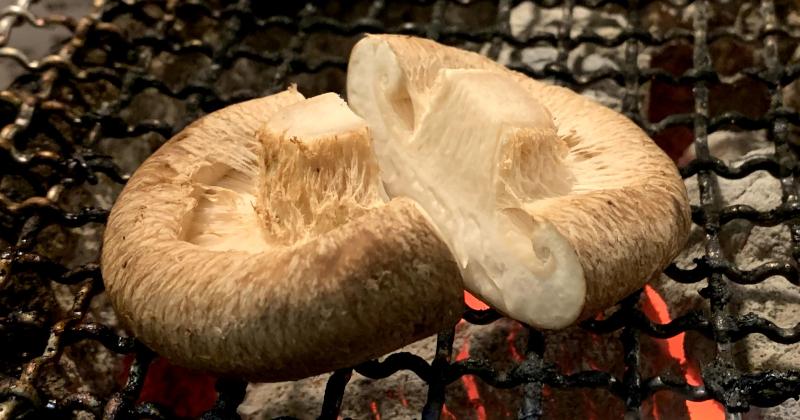 肉厚椎茸の網焼き