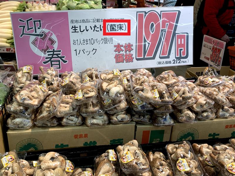 菌床椎茸(きんしょうしいたけ)